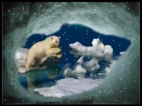 Northern Norway's Arctic Showcase