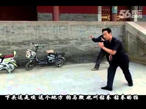 Master Zhen Bao De - Shanxi Xingyi 5 Flower Canon Solo Practice