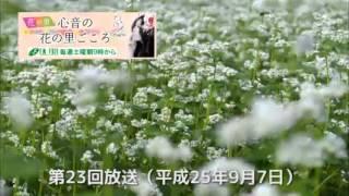 FMフジ「心音の花の里ごころ」 第23回 2013年9月7日 2013年4月~10月、F...