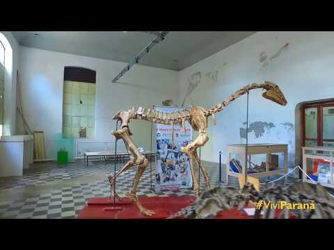 """Museo de Ciencias Naturales y Antropológicas """"Prof. Antonio Serrano"""""""