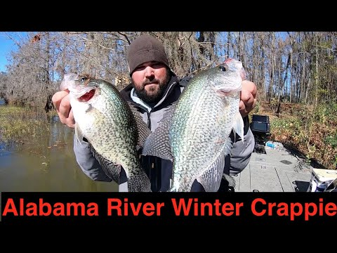 Alabama River Winter Crappie Fishing