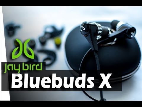 Jaybird Bluebuds X Wireless Bluetooth Earbuds - REVIEW