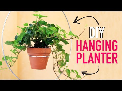 DIY Modern Hanging Planter - HGTV Handmade