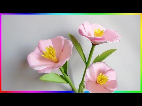 How To Make Easy DIY Paper Flower Crafts | Zinat Crafts