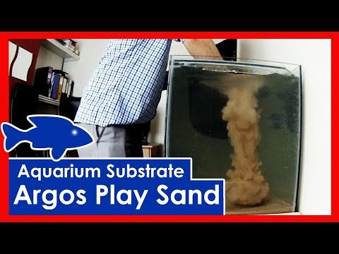 How To Clean And Use Argos PlaySand As Fishtank Aquarium Substrate
