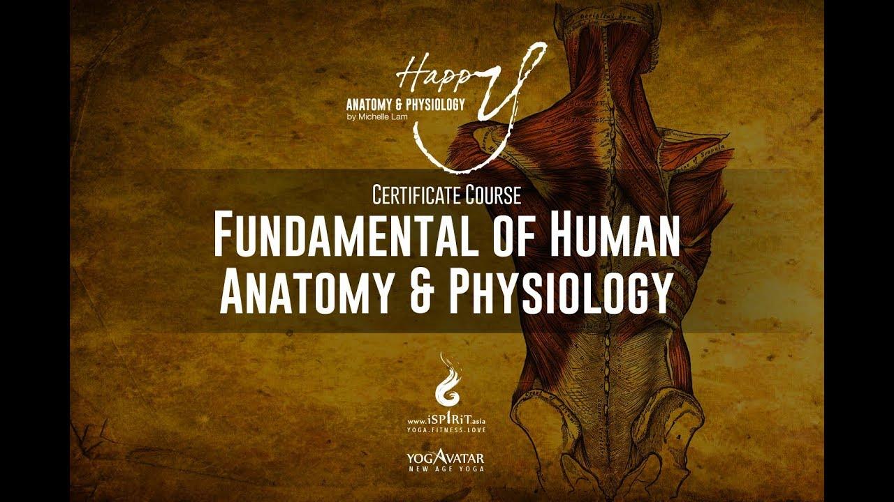 Fundamental of Human Anatomy & Physiology Yoga Training in Malaysia ...