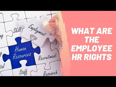 What Are The Employee HR Rights