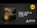 Diaz Soto Amp Exploid Entropy Druid Records mp3