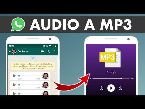 CÓMO CONVERTIR AUDIOS Y NOTAS DE VOZ DE WHATSAPP A MP3 EN ANDROID 🎧