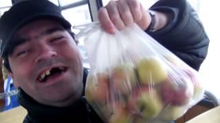 jedi jabuke brate