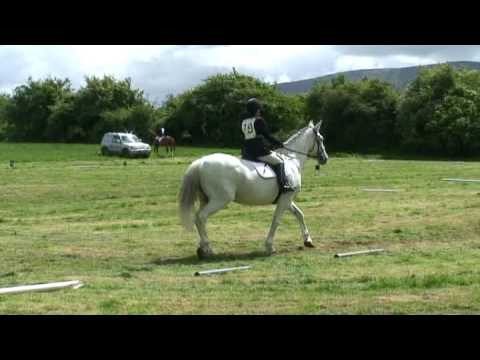 Friary RC - Hillcrest ODE 07- Caron Moran Dressage