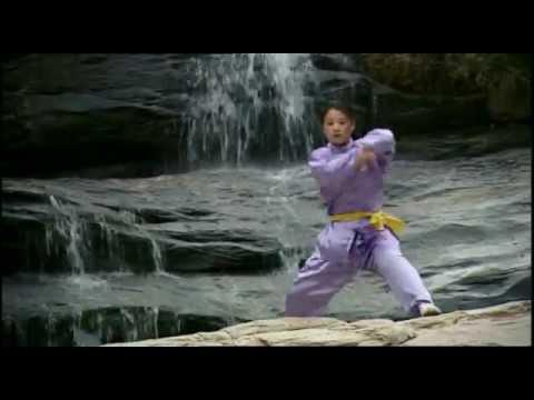Loto y Espada (Monjes Shaolin - Artes Marciales - Kung Fu)