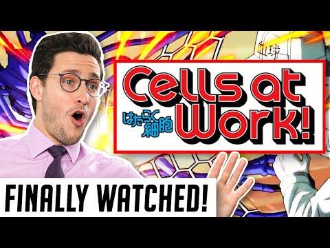 Real Doctor Reacts to CELLS AT WORK (Hataraku Saibō)