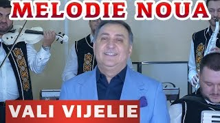 Vali Vijelie &amp Iulian Dumitrache feat. Roson Music Band - Cine-mi da inapoi anii 2019