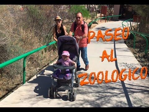 Visita el zoológico de Hermosillo