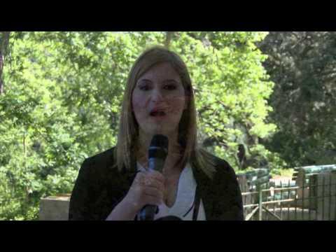 European Green Week Opening: Buskett Woodland, Malta