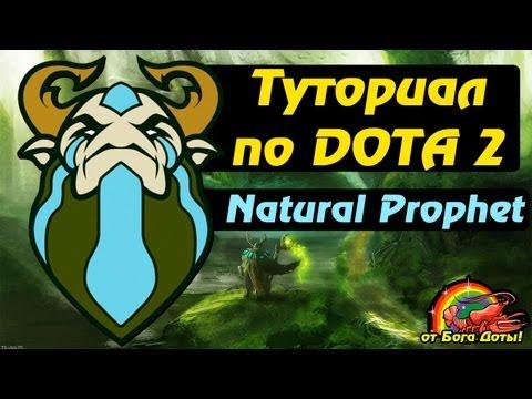 видео: Туториал по Доте 2 - nature prophet (Фура) от Бога доты!