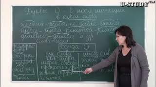 Подготовка к ЕНТ: Буквы Ы, Ё после шипящих в корне слова