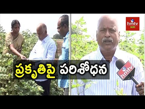 Research On Organic And Chemical Farming | hmtv Agri
