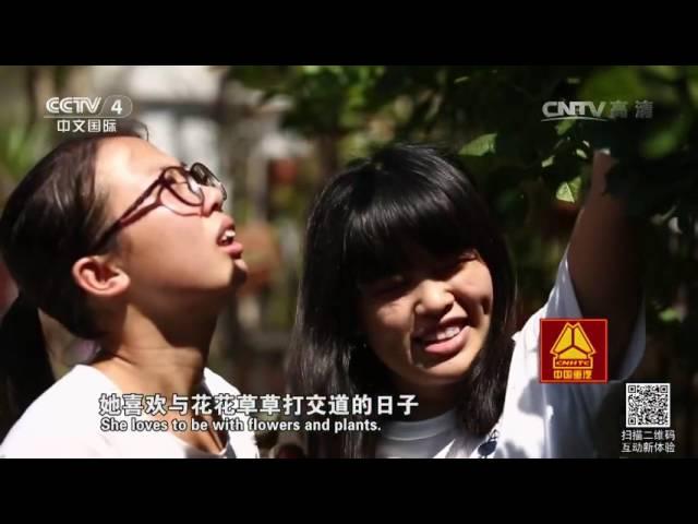 20160722 走遍中国  换一种方式看世界