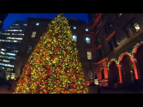 ⁴ᴷ⁶⁰ Walking NYC (Narrated) : Grand Central Terminal To Lotte New York Palace Hotel (November 2019)