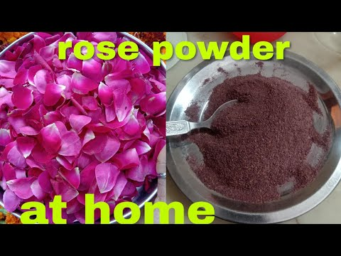 Homemade rose powder at home to make face pack and get ...