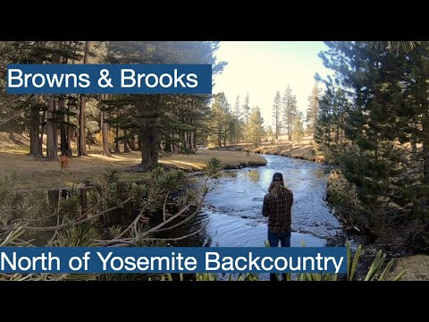 Kennedy Meadows To Kennedy Lake Fly Fishing Brook & Brown Trout Success! Ep. 2 (Backpacking)