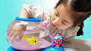 어항에 상어를 키우고 싶어요!! 서은이의 핑크퐁 아기상어 어항 움직이는 상어 키우기 Shark Fishbowl Toy