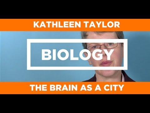 BIOLOGY - The Brain as a City - Kathleen Taylor