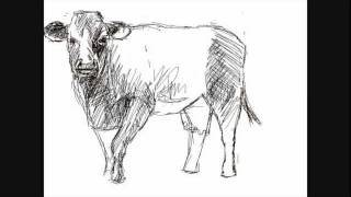 How to draw a cow - Things to Draw