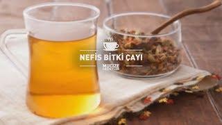 Nefis Bitki Çayı Tarifi #mucizelezzetler
