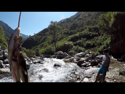 Fishing in Nepal !!! Himalayan Trout !!! Natural Fishing !!!