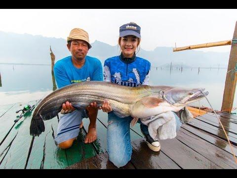 ล่าปลาค้าว 15 กิโล ที่เขื่อนเขาแหลม by fishingEZ