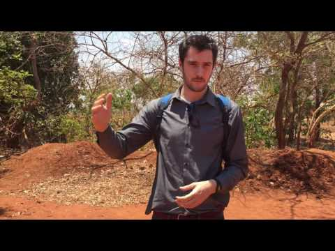 Integrated solutions for nutrition and health - Mchinji District, Malawi