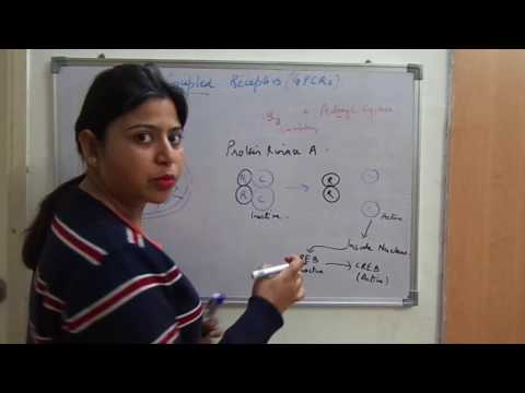 G-protein coupled receptors-Part 1