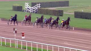 Vidéo de la course PMU PRIX DE L'ELEVAGE