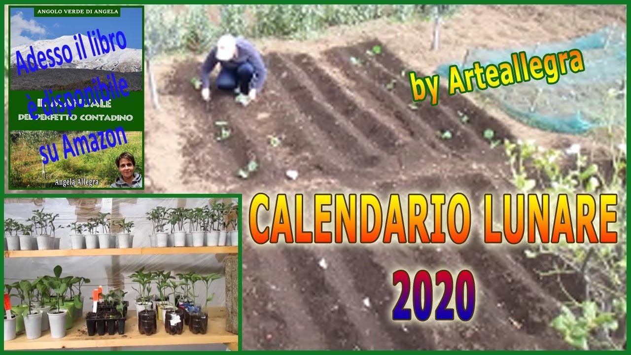 Cosa Piantare A Febbraio a grande richiesta il calendario lunare mese per mese - febbraio 2020