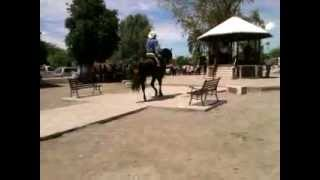 Fabrica De Los Angeles - Resbalon De Caballo En La Plaza - Fiestas Del 2 De Agosto