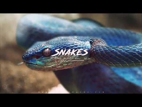 "Melodic Trap Instrumental ""SNAKE"" | Dope Rap Beat Instrumental 2021 (prod. Sixty6beatz)"