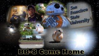 BB-8 Come Home!