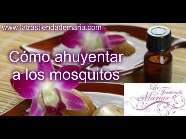 Como ahuyentar a los mosquitos- La Trastienda de Maria
