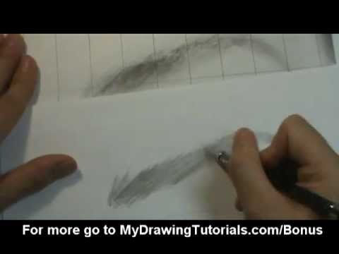Realistic Drawing Tutorial 5 8 Eyebrow Drawing How To Draw