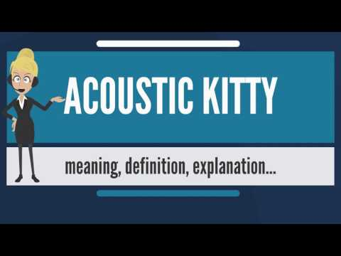 What is ACOUSTIC KITTY? What does ACOUSTIC KITTY mean? ACOUSTIC KITTY meaning & explanation
