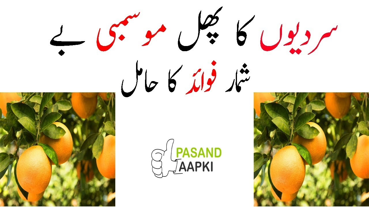 orange : malta : sweet orange of full information in urdu with Dr Khurram:Pasand Aapki