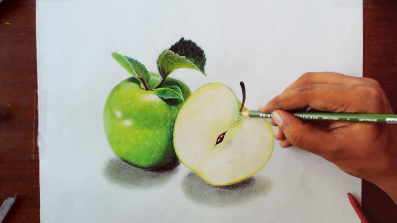 Drawing green apples prismacolor pencils