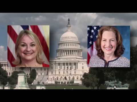 Two New Congresswomen: Reps. Susan Wild and Kim Schrier