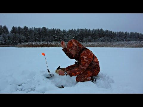 ловля густеры в озерах