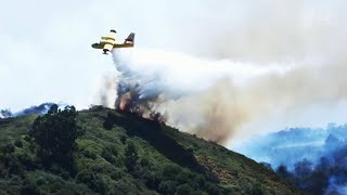 На Канарских островах площадь природных пожаров достигла десяти тысяч гектаров.