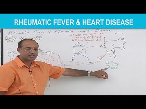 Rheumatic Fever & Heart Disease - Pathology
