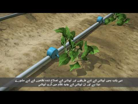 Dubai Ground Water Conservation Program video